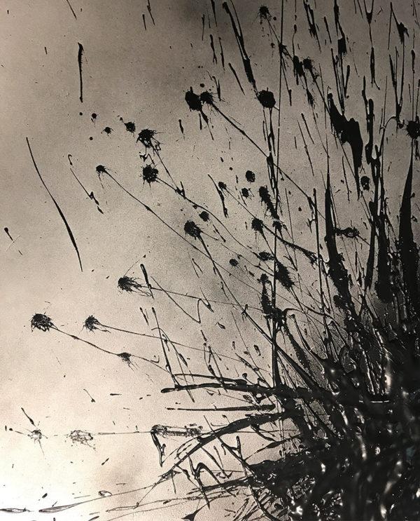 Zwart schilderij - FAUQ Studio